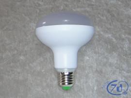Ny grøn og effektiv LED teknologi - Udskift de gamle pærer nu