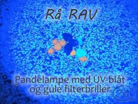 Pandelampe med UV-blåt / Hvidt lys og fokus - Udforskning - fiskeri - ravjagt... Klar til brug